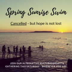 Spring Sunrise Swim - cancelled