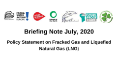 Briefing Note July, 2020 Policy Statement on Fracked Gas and Liquefied Natural Gas (LNG)