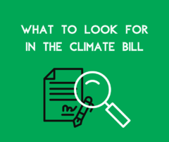 What to look for in climate bill - green